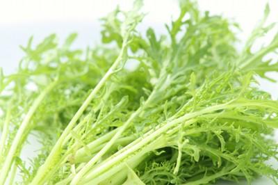 Mustard Leaf Green Frills